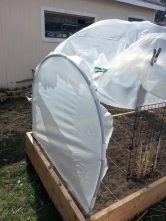 Hoop House End Completed 03-30-2014