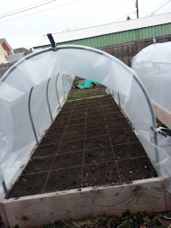 Hoop House Putting Plastic On 03-05-2014